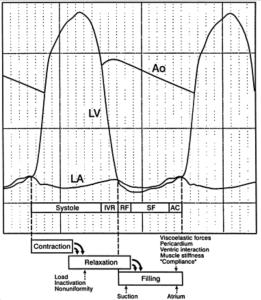 Diastolic flow