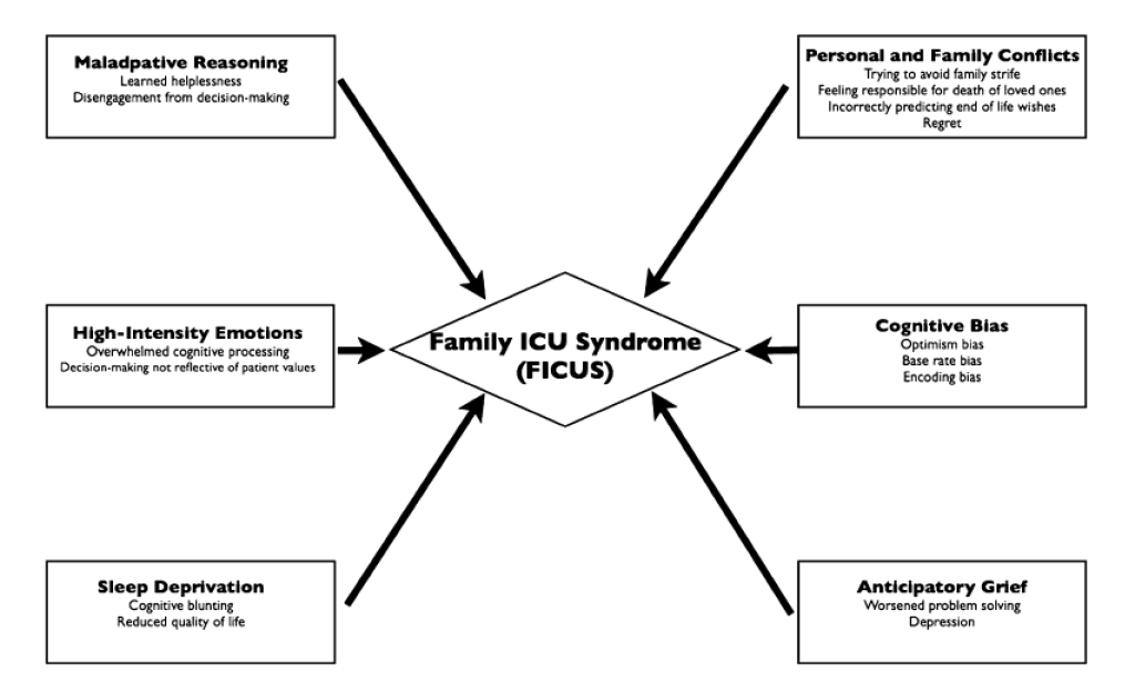 Netzer G, Sullivan DR. Recognizing, naming, and measuring a family intensive care unit syndrome. Ann Am Thorac Soc. 2014;11(3):435-41.